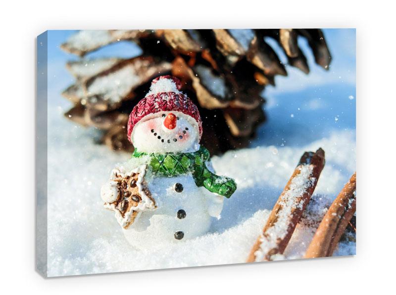 Snow Man- Pepanza.ro