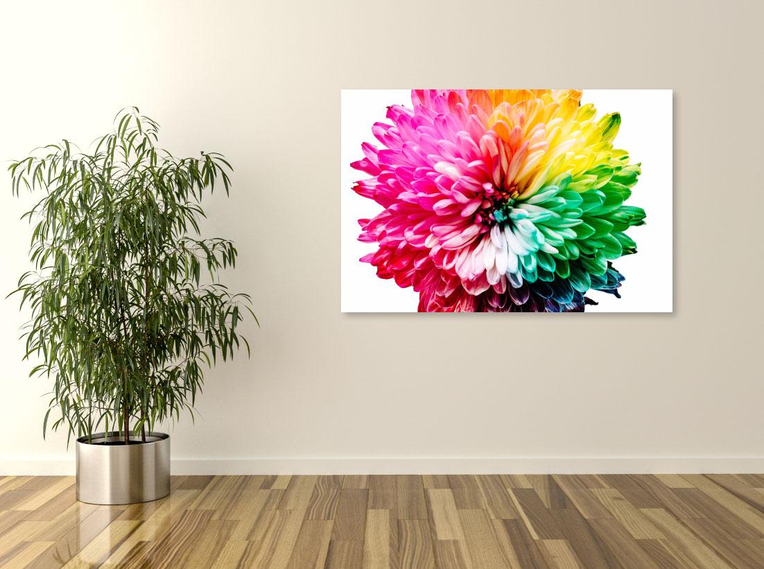 Tablou canvas Colorful Flower - Pepanza.ro