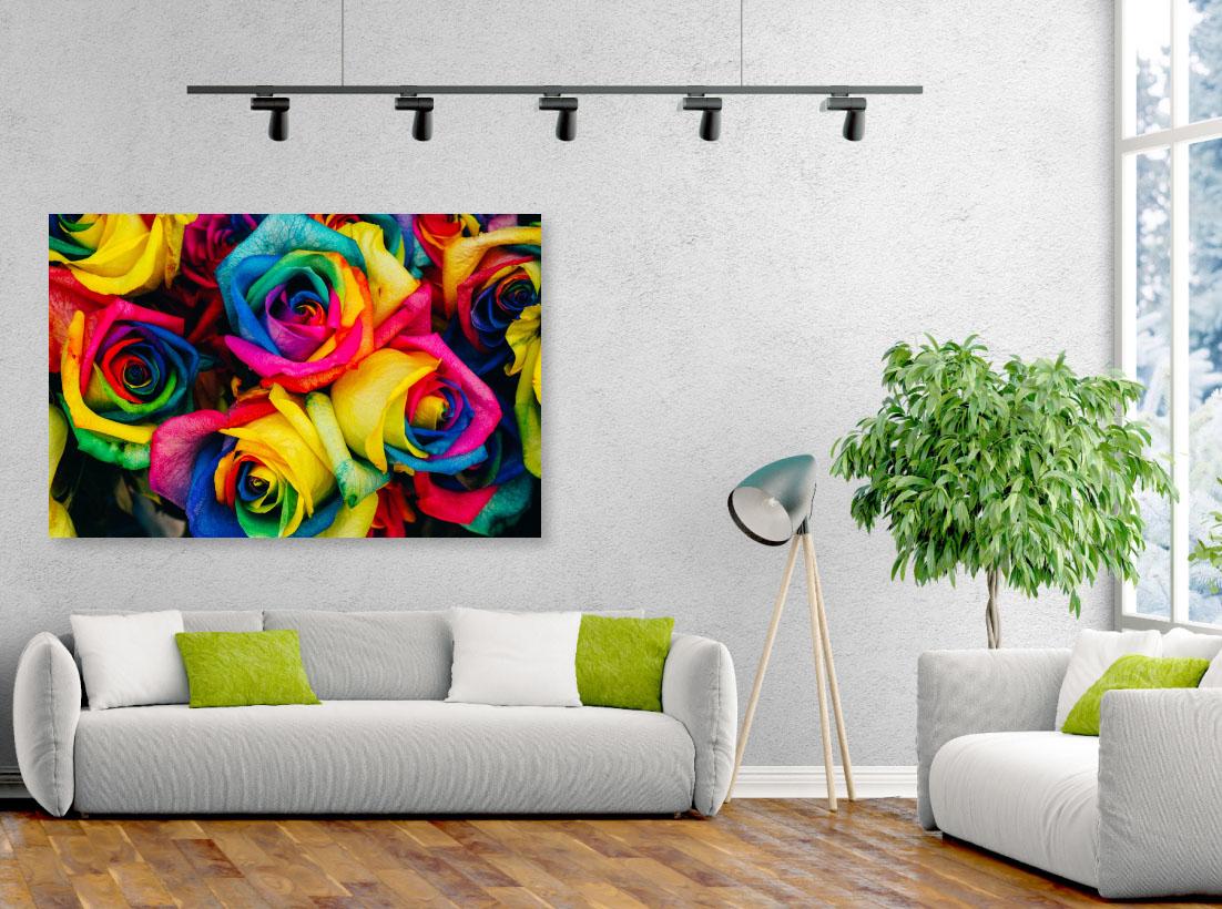 Trandafiri Colorati- Pepanza.ro