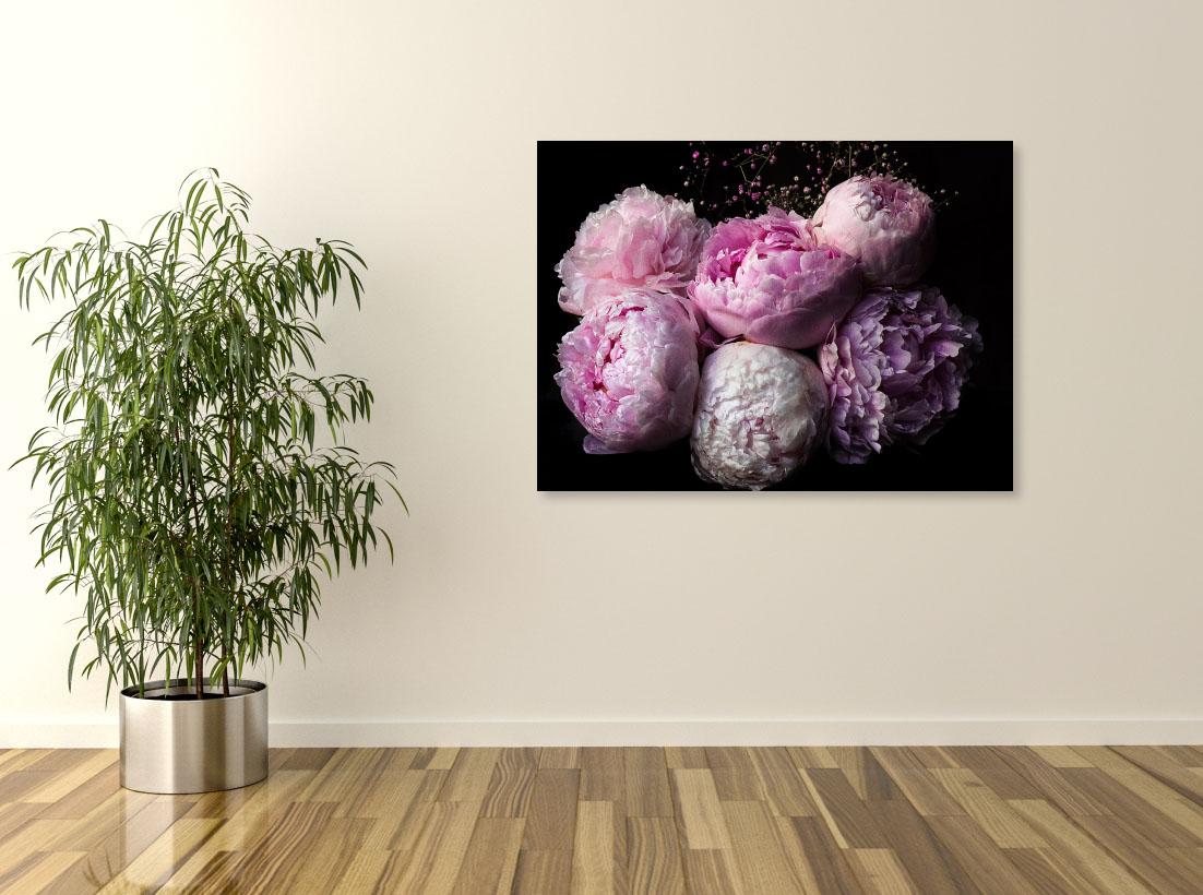 Tablou canvas Bujori roz - Pepanza.ro