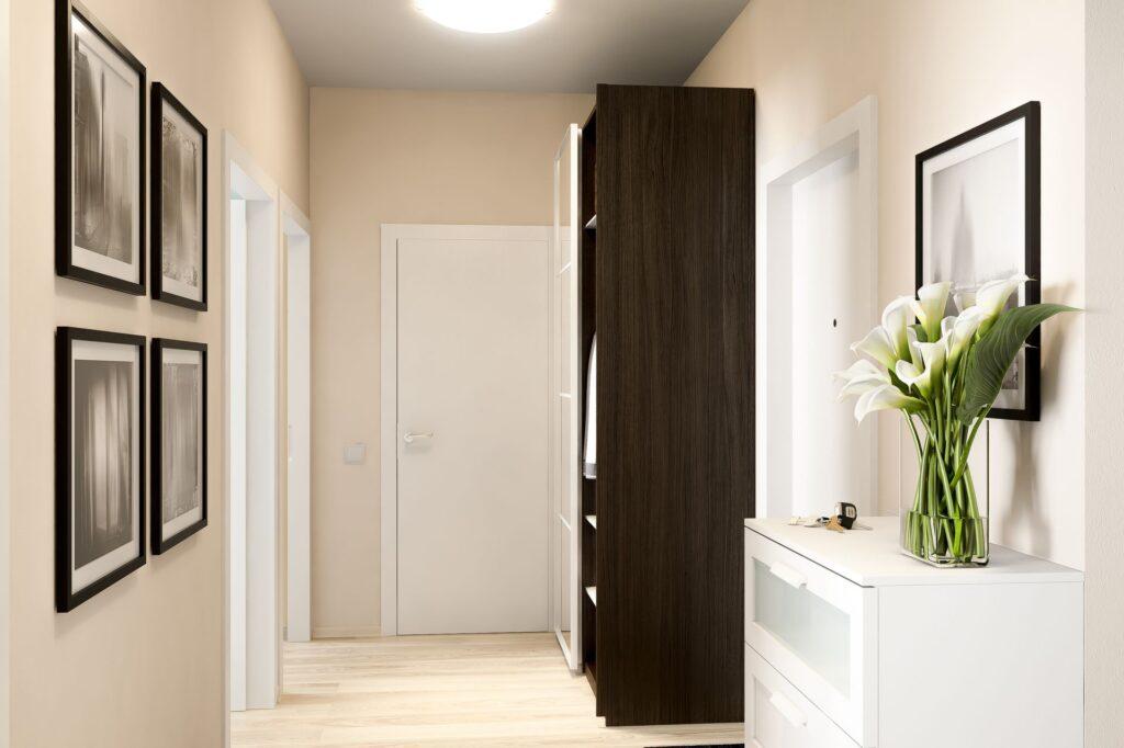 1. Ce decorațiuni să pui pe perete în hol (6)