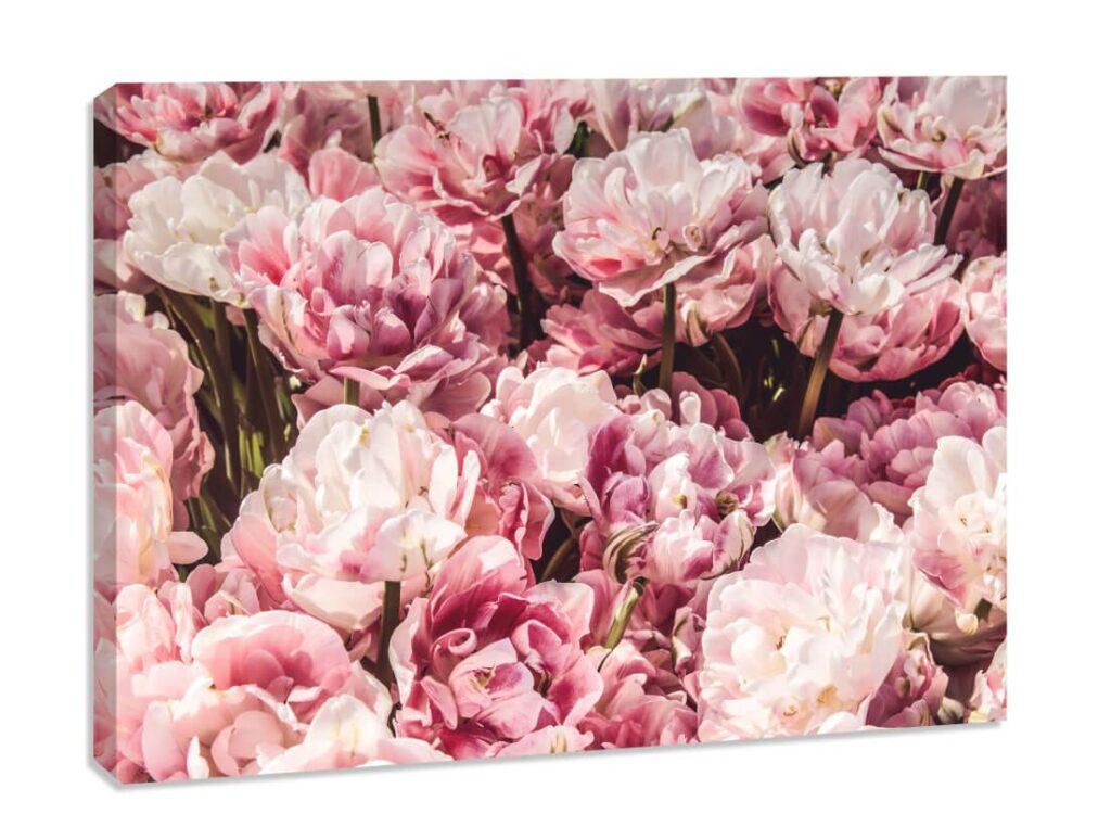 Tablou canvas Flori de Bujor