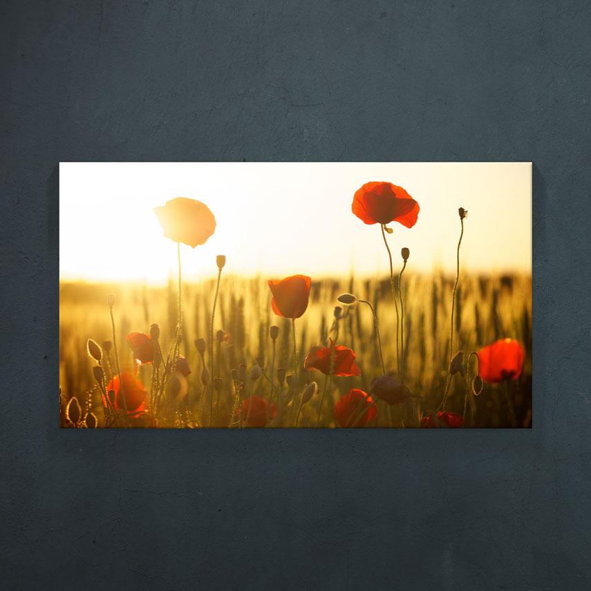 Tablouri cu flori sau peisaje