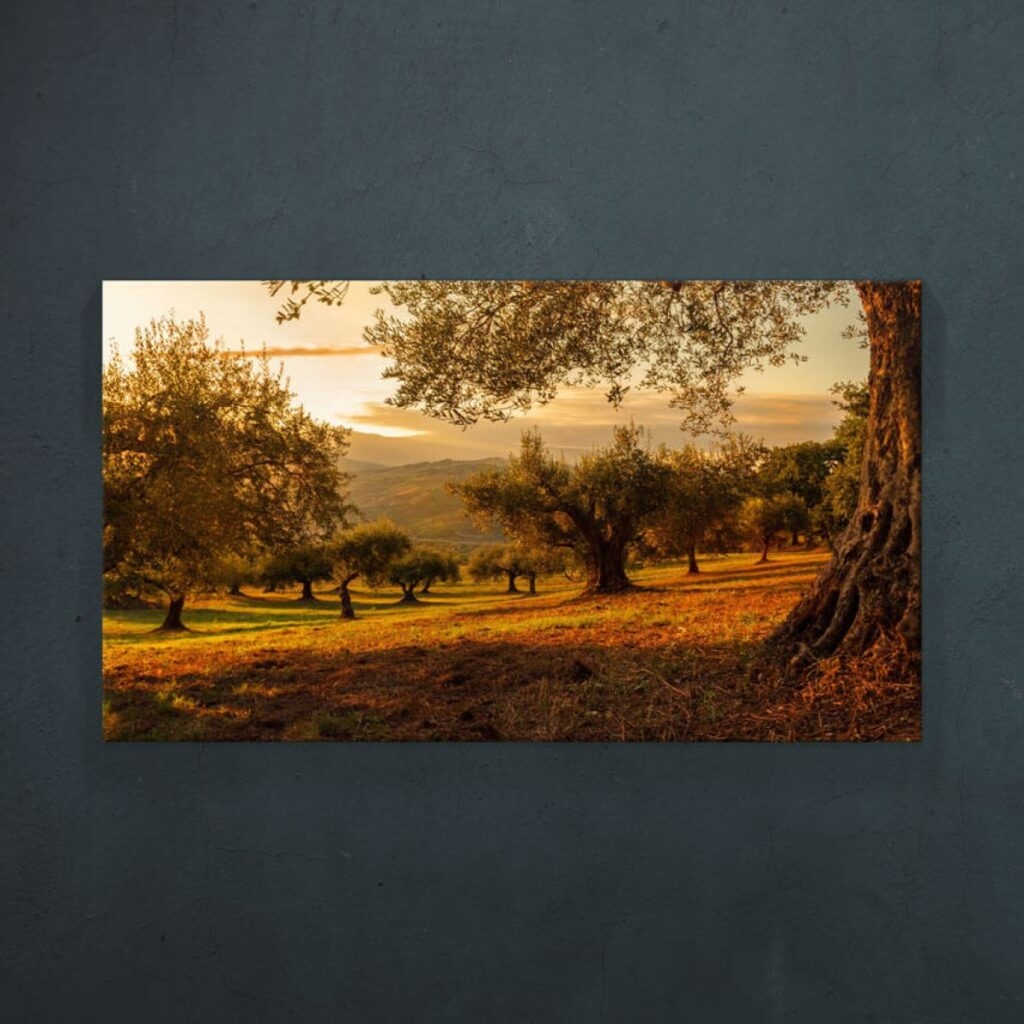 tablou canvas natura Pepanza