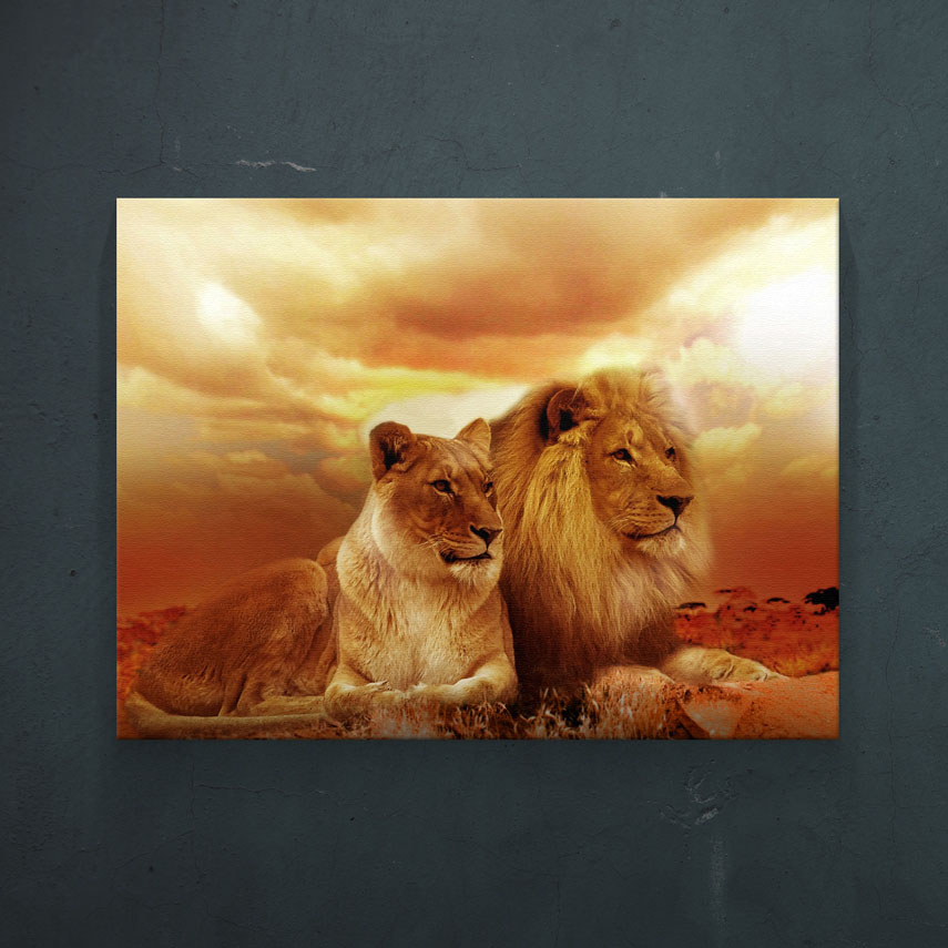 Leul si leoaica- Pepanza.ro