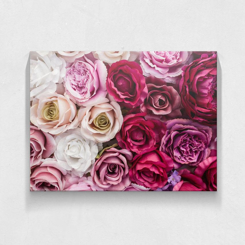 Carpet of roses- Pepanza.ro