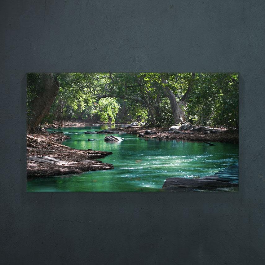 Tablou canvas Forest and river - Pepanza.ro