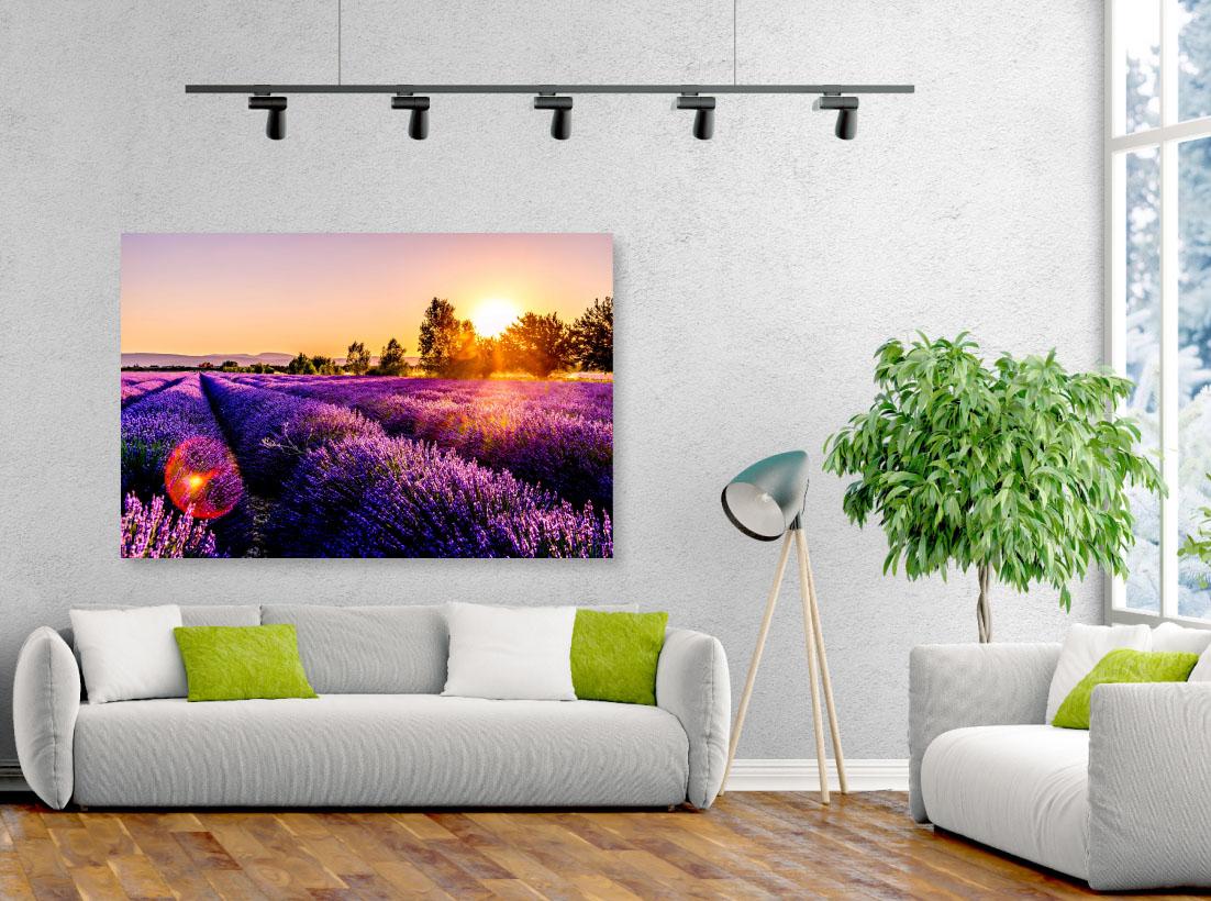 Tablou canvas Peisaj cu lavanda - Pepanza.ro
