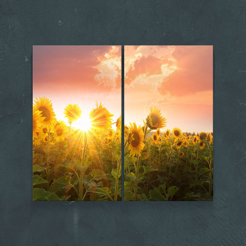 Tablou cu 2 piese Peisaj Câmp de Floarea Soarelui - Pepanza.ro