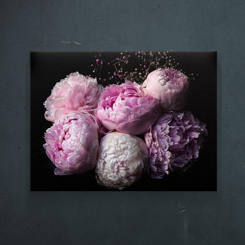 Bujori roz- Pepanza.ro