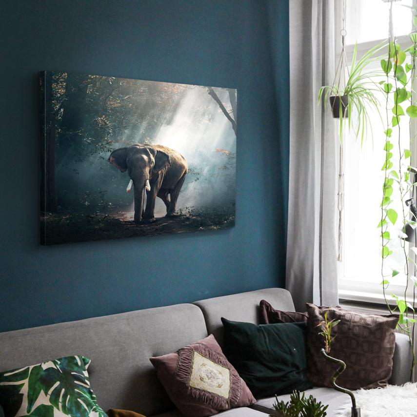 Tablou animale Elefant in natura - Pepanza.ro
