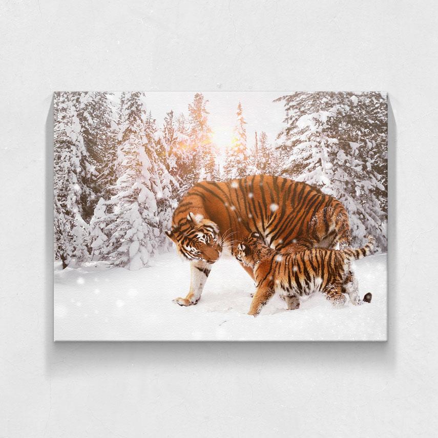 Tigru cu pui- Pepanza.ro