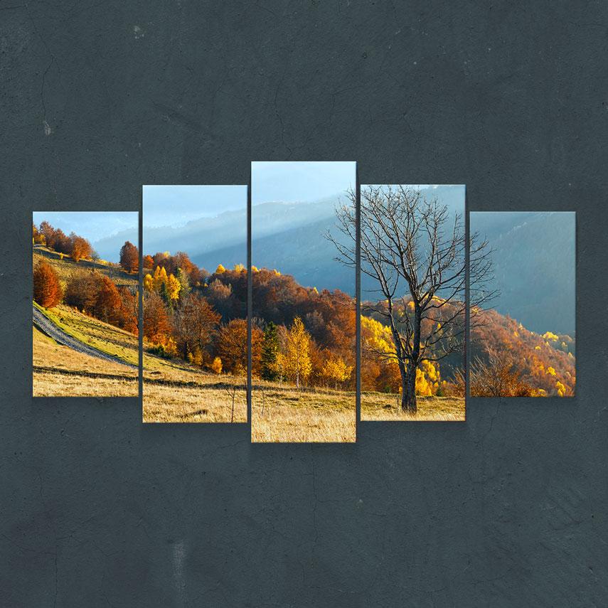 Peisaj de Toamnă cu Copaci- Pepanza.ro