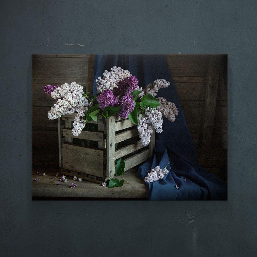 Flori de liliac- Pepanza.ro