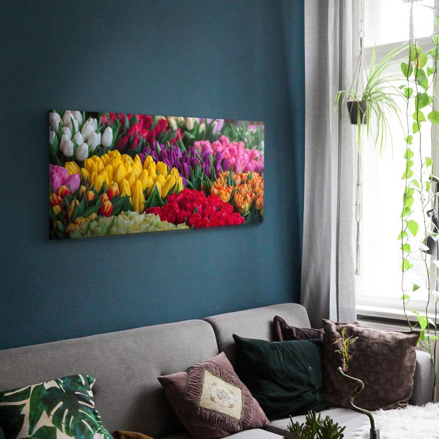 Tablou canvas Colored Tulips - Pepanza.ro