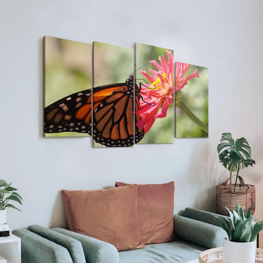 Tablou cu 4 piese Fluture - Pepanza.ro