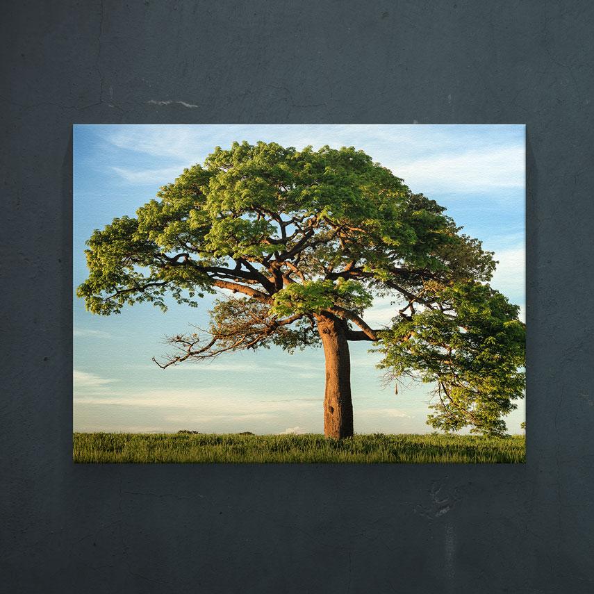 Tablou canvas Copacul vietii - Pepanza.ro