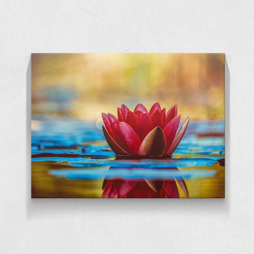 Tablou canvas Floare roșie - Pepanza.ro