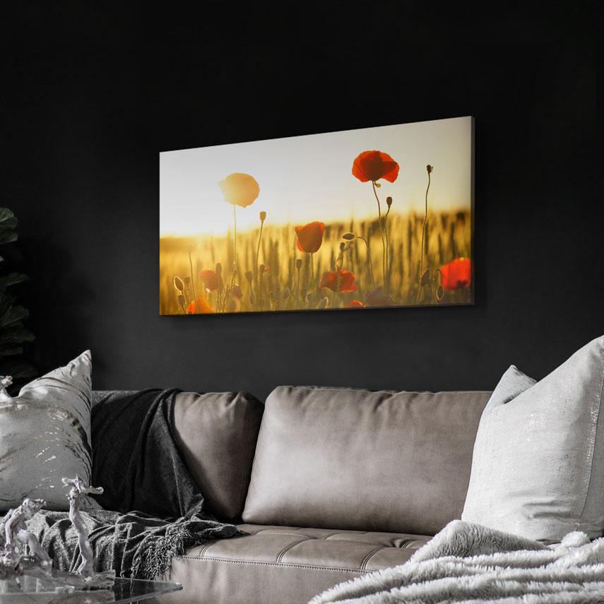 Tablou canvas Câmp cu maci roșii - Pepanza.ro