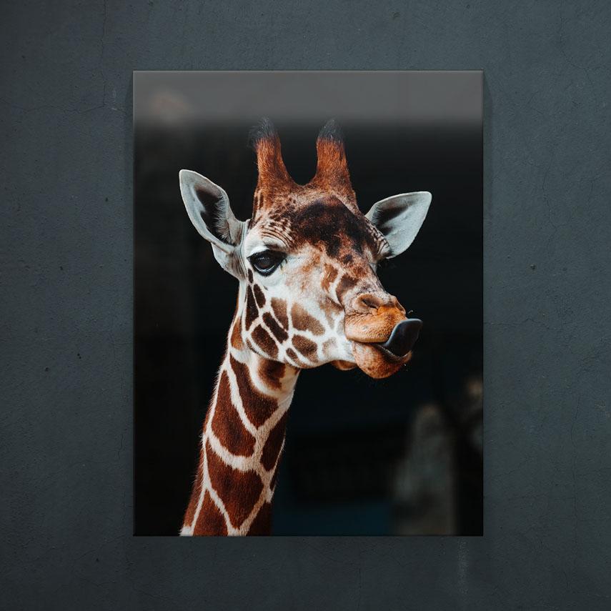 Girafa- Pepanza.ro