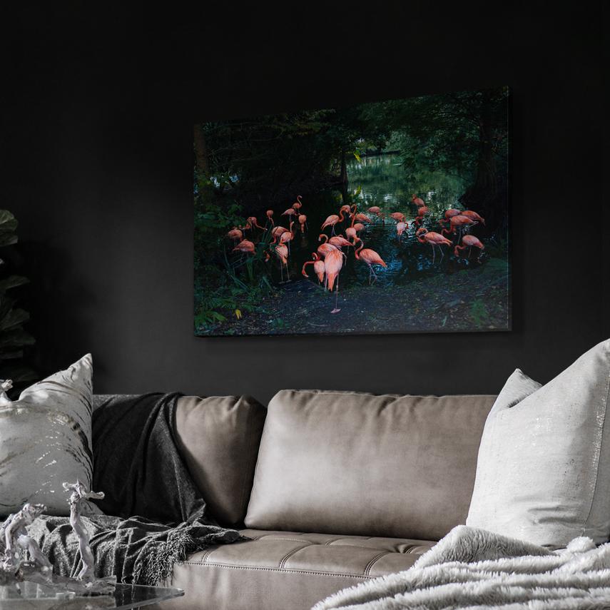 Tablou animale Pasari Flamingo - Pepanza.ro