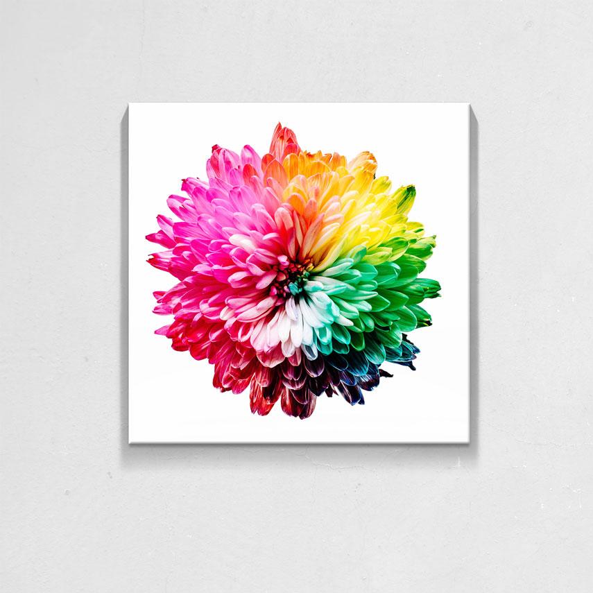 Colorful Flower- Pepanza.ro