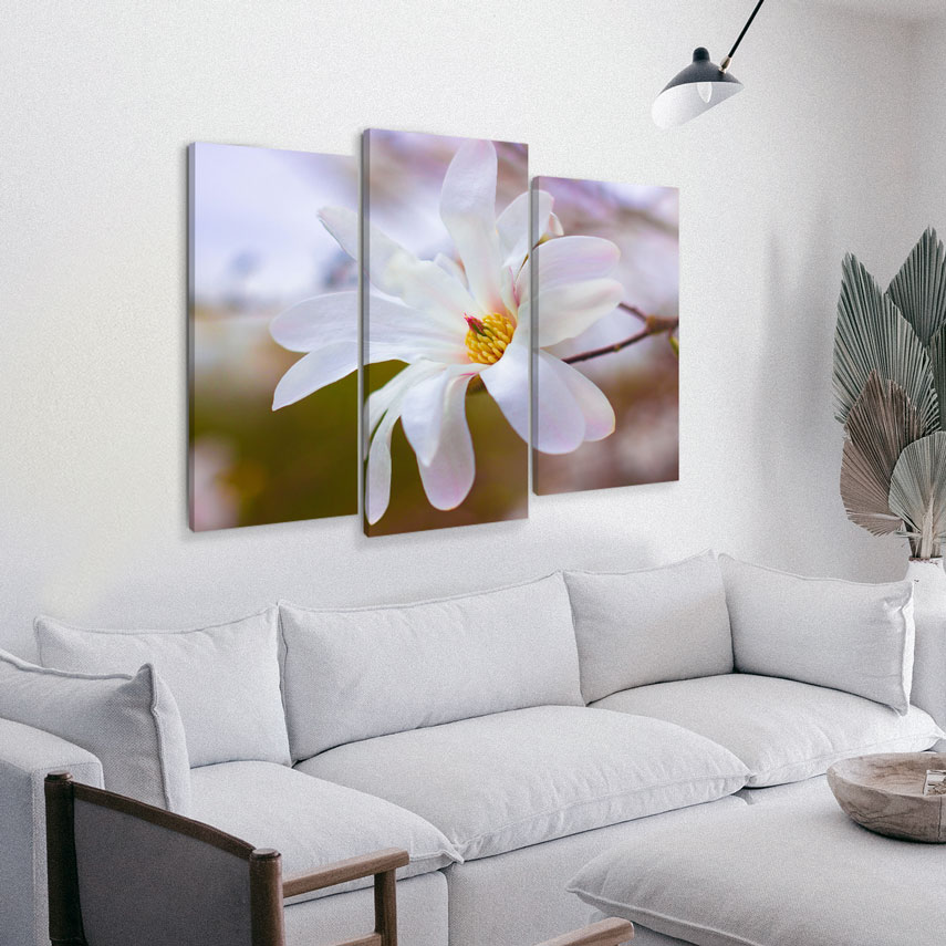 Tablou canvas Magnolie - Pepanza.ro