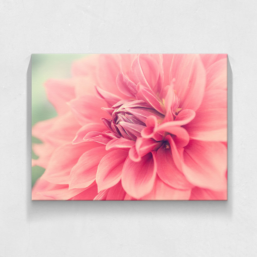 Pink flower- Pepanza.ro