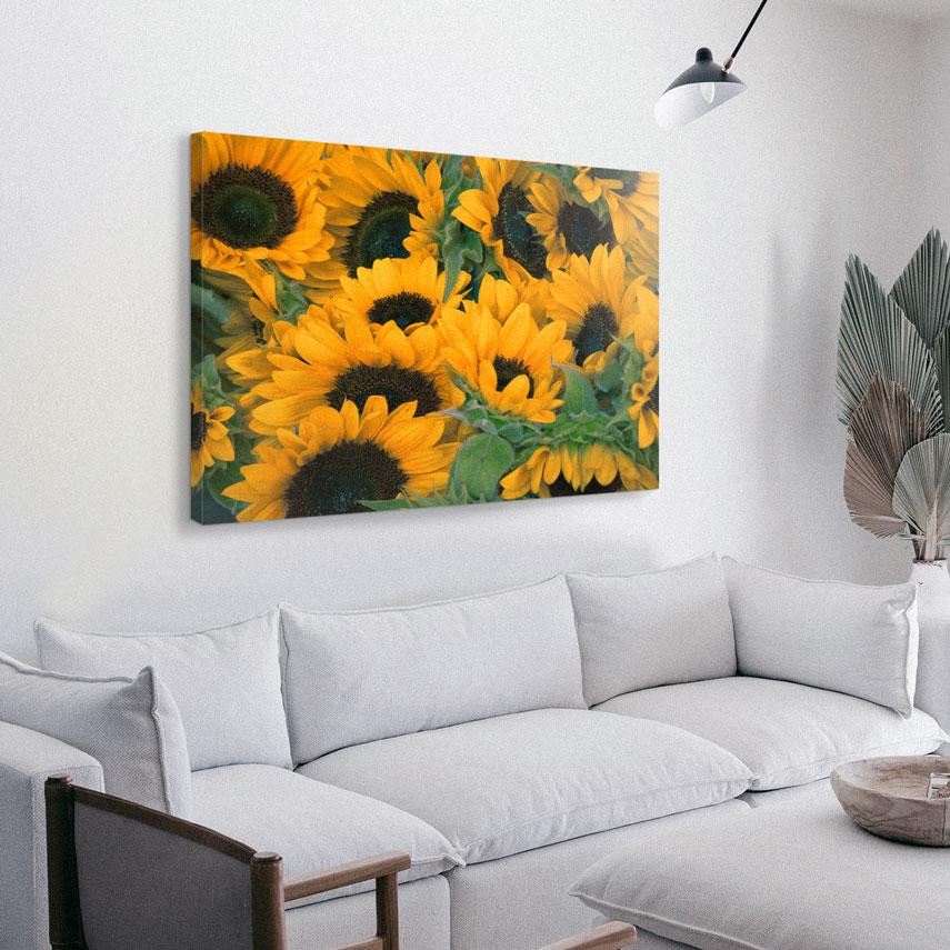 Tablou canvas Camp cu floarea Soarelui - Pepanza.ro