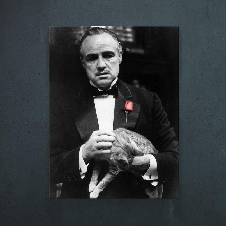 Don Corleone - Red Rose- Pepanza.ro