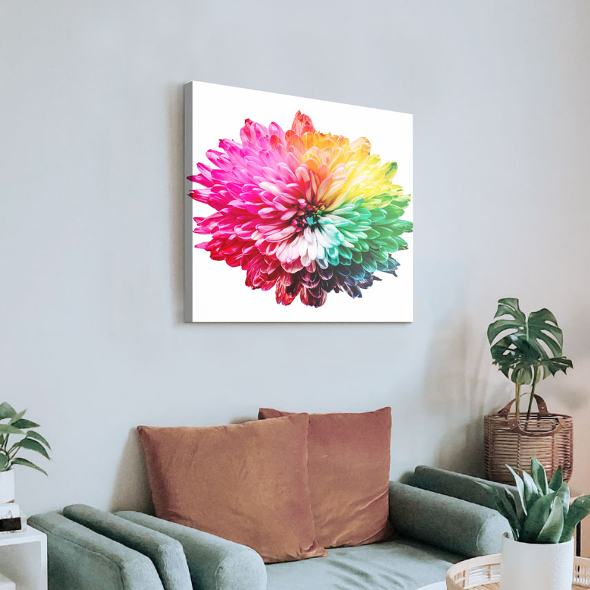 Tablou canvas Floare Colorata - Pepanza.ro