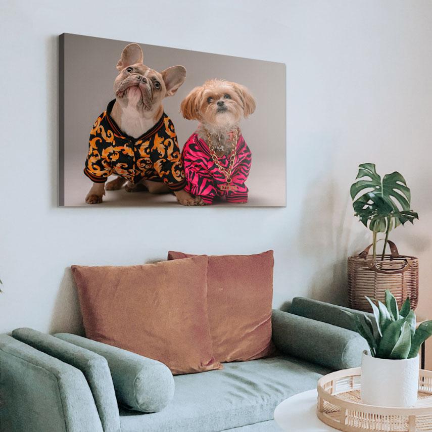 Tablou animale Cool dogs - Pepanza.ro