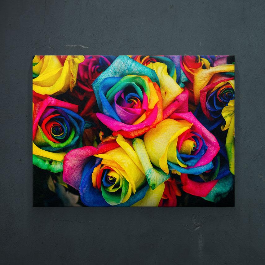 Tablou canvas Trandafiri Colorati - Pepanza.ro