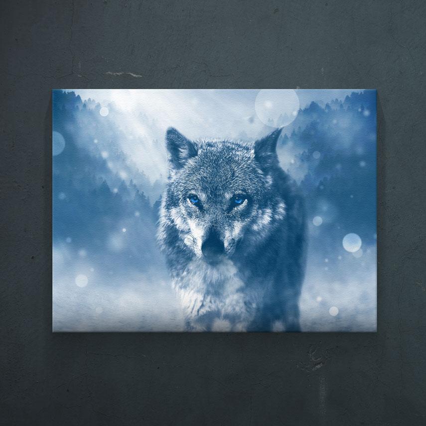 Lonely wolf- Pepanza.ro